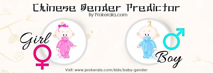 Chinese Gender Predictor